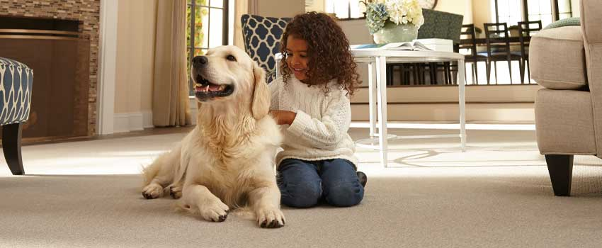 Mohawk-Pet-Flooring-Carpet